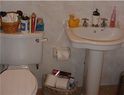 Home Staging before picture bathroom