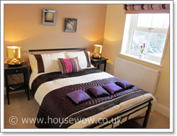Show Home Picture 2